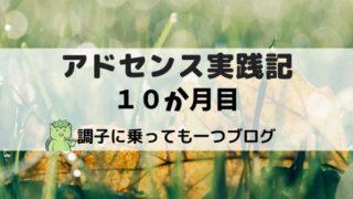 アドセンス実践記10か月目