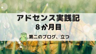 アドセンス実践記8か月目