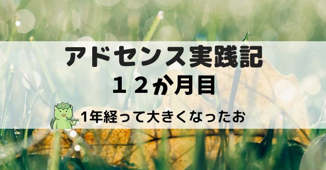 アドセンス実践記12か月目